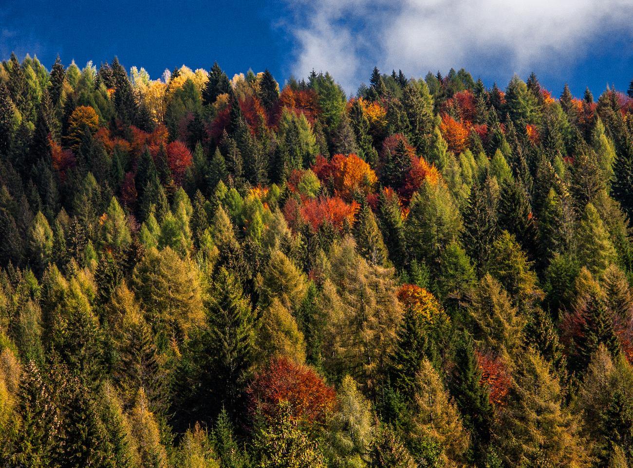 autunno, Dolomiti