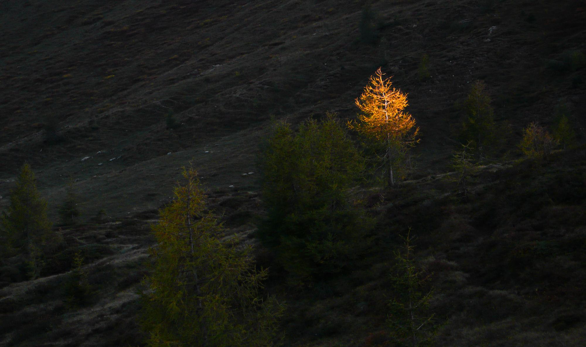 Dolomiti, passo di Valles