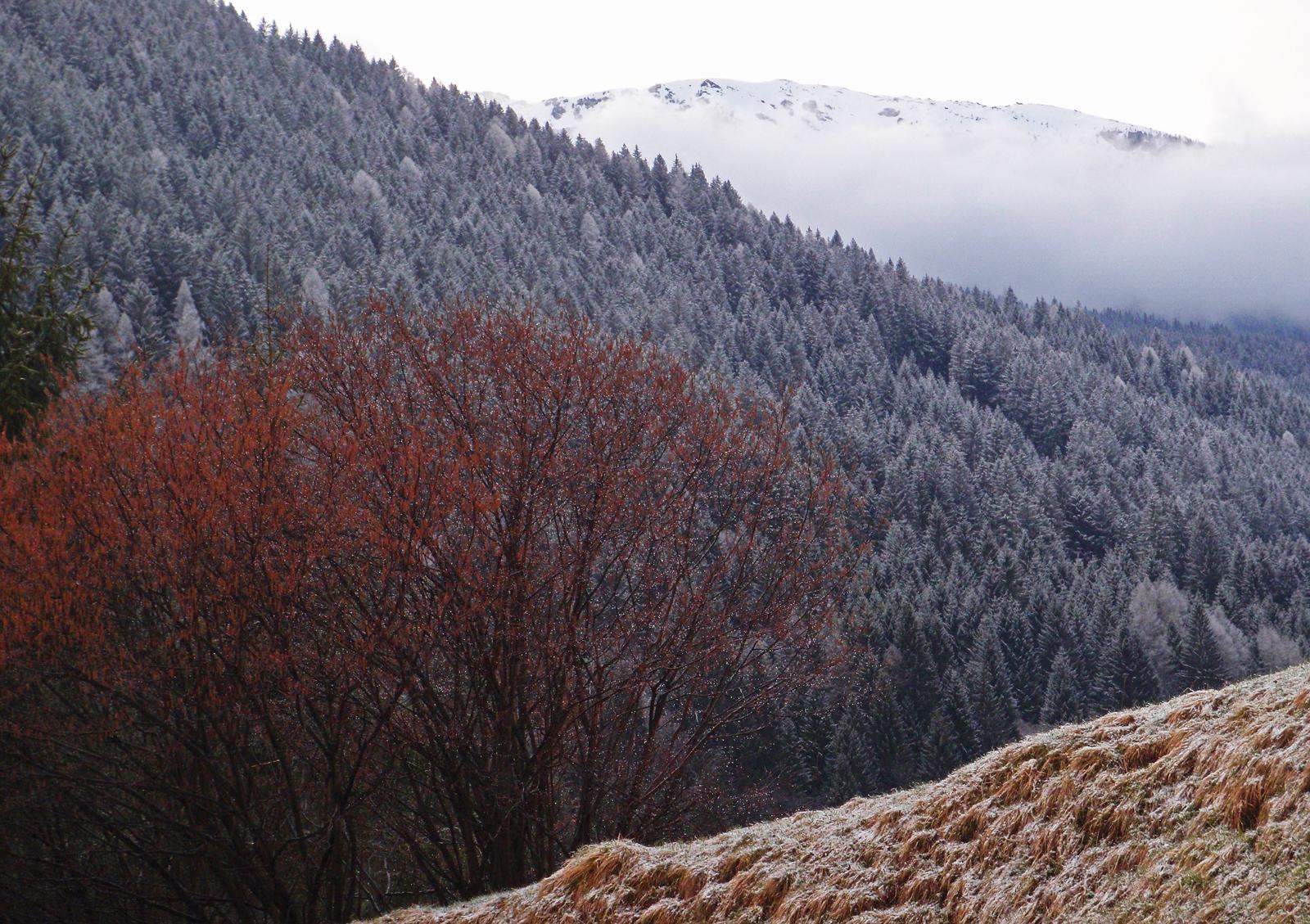 Dolomiti, Primiero